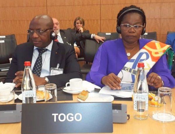 OCDE : le Togo prend part à la 5ème réunion du comité directeur