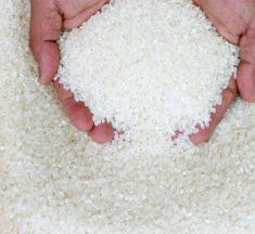 Agriculture : le Togo s'investit pour la consommation des produits locaux
