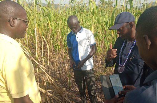 Togo: la zone d'agropole de Kara aura bientôt 20 nouveaux forages